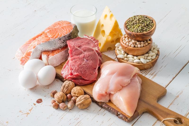 manger des protéines pour grossir