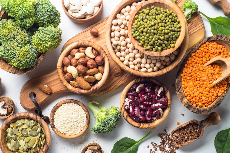 protéines végétales pour grossir