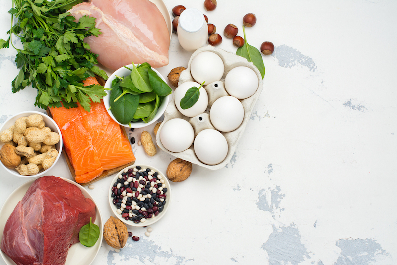 les protéines pour grossir